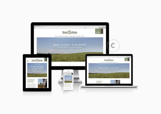 trakaliaroudis website terra ferea homepage e15806 e2d058ac1910002e272bb5283c1c474e